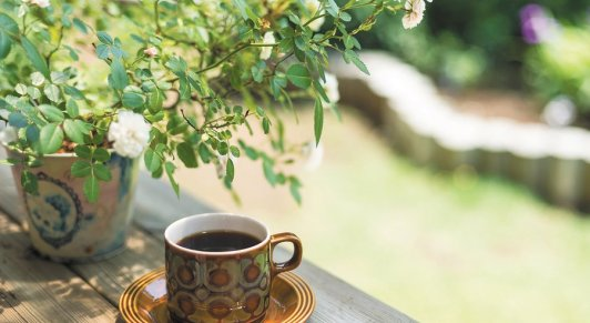 coffee_in_garden_r900x493